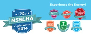 2014-NSSLHA-Experience